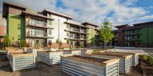 Orchards at Orenco Architects & Engineers